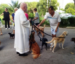 2013 Blessing of the Animals